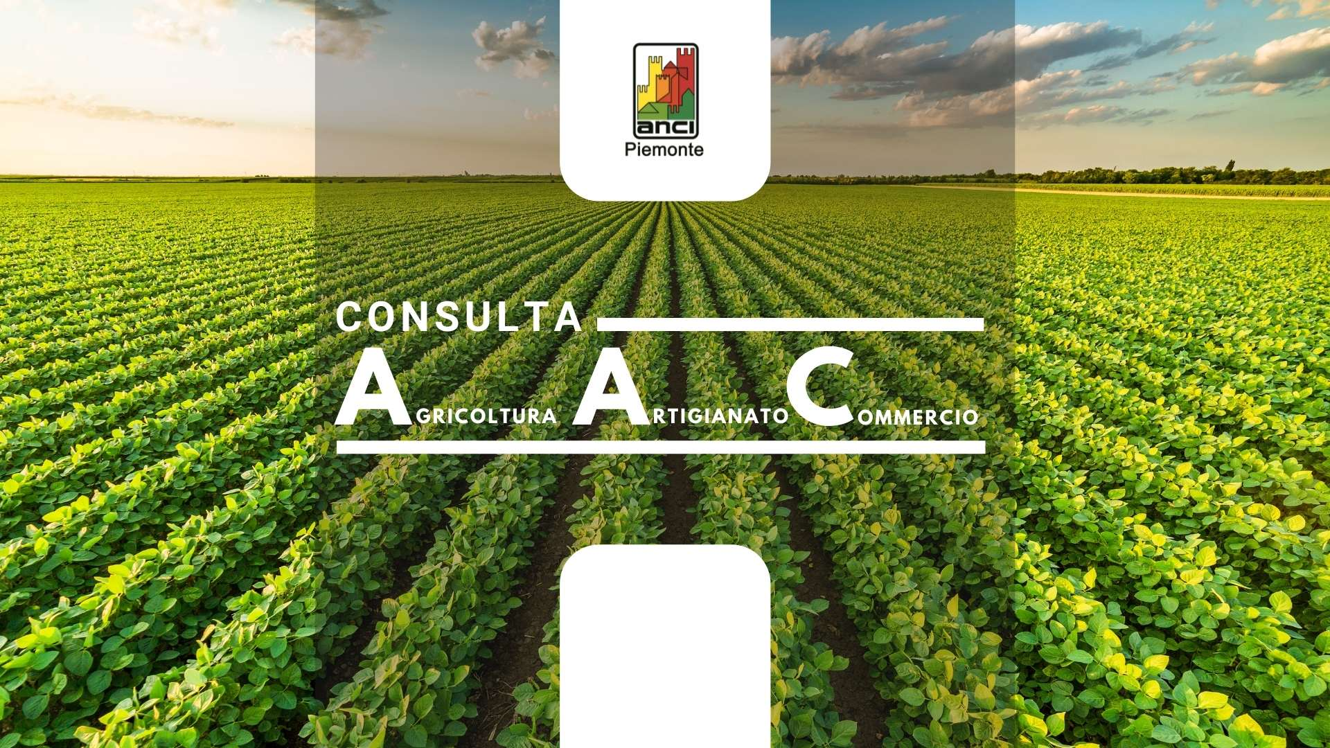 Consulta Agricoltura, Artigianato e Commercio